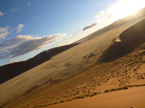 ナミビアナミブ砂漠2 (8)
