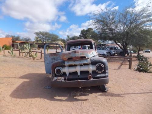 ナミビアナミブ砂漠1 (1)