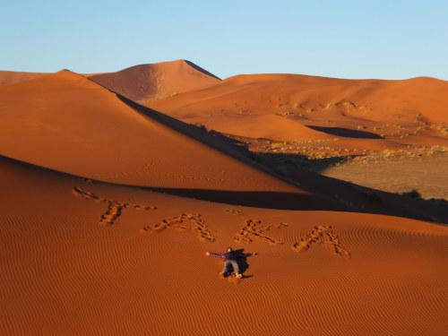 ナミビアナミブ砂漠1 (4)