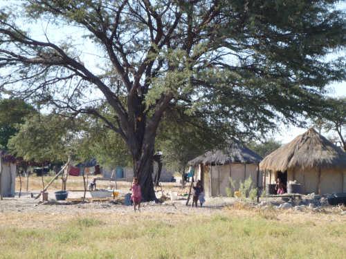 ボツワナはアフリカで大好きになった国 (5)