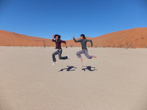 ナミビアナミブ砂漠1 (8)
