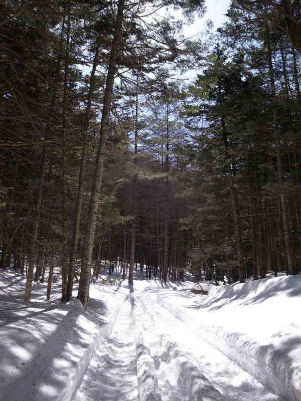 厳冬期2月の冬山に初挑戦!八ヶ岳の頂点、赤岳を雪山登山(赤岳鉱泉テント泊ルート、コースタイム有) (34)