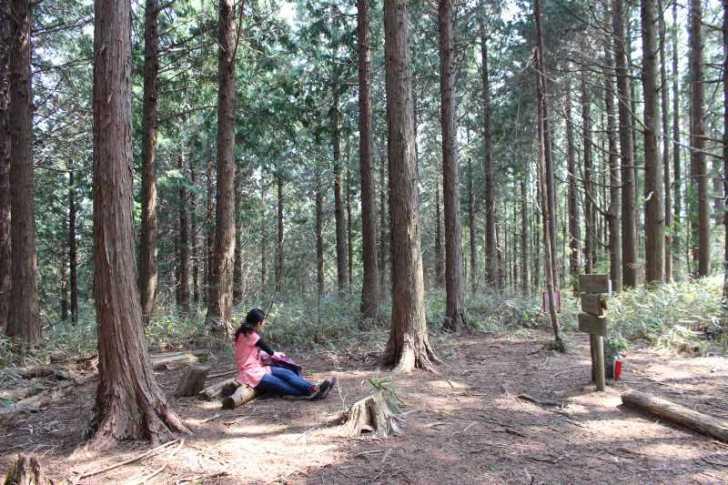奥三河名山八選:愛知県新城市の竜頭山(りゅうずさん)に登ってきた! (23)