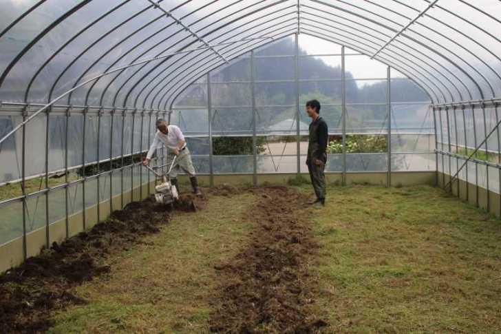 草刈機と耕運機を使いこなしてビニールハウスを耕す方法 (11)