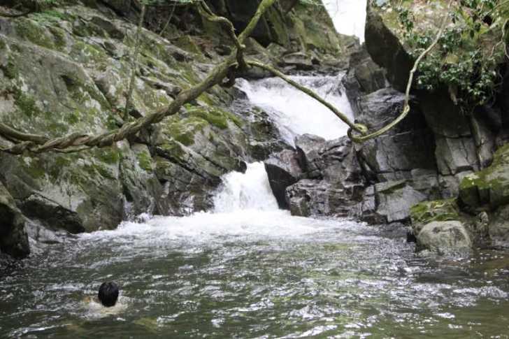 愛知県新城市作手の「保永の三滝」の滝つぼで泳いでみた![動画あり] (3)