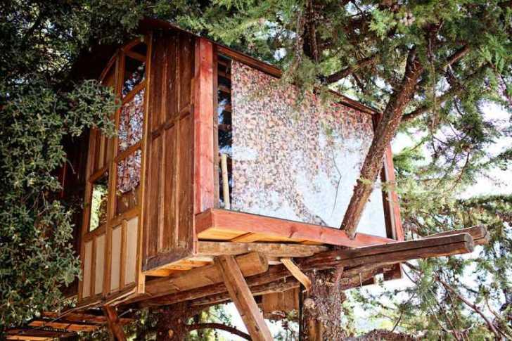 s_Airbnbで泊まれる世界のツリーハウス