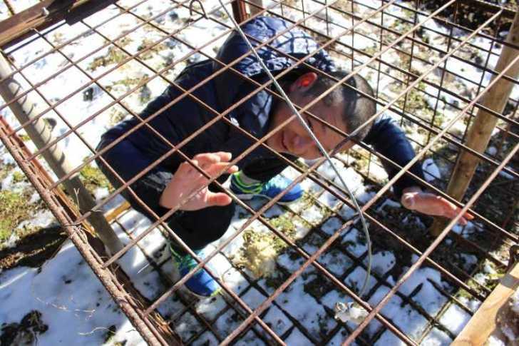 庭の畑を開墾してマッスルマッスル!檻の中にビールを入れておいたら獲物が捕まったよ!y (6)
