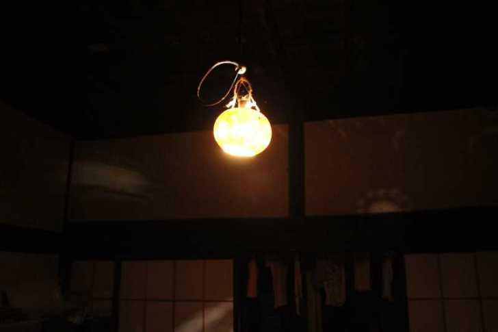 【一緒に作りませんか?】僕がひょうたんを育ててライトやスピーカーを作ろうと決めた日 (1)