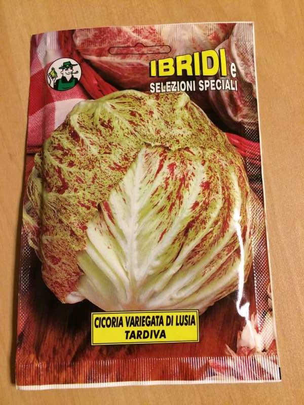 【珍しい野菜栽培】3.イタリア野菜の種が送ってもらえたので、赤チコリータルディーボなども育てます! (1)