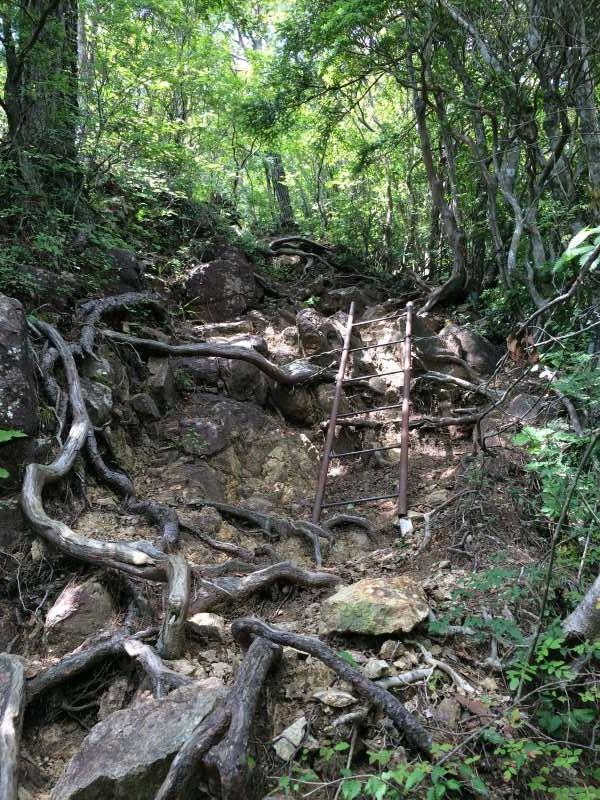 三ツ瀬明神山を登山してきたよ!登山ルートは絶景の乳岩コース【愛知】 (23)