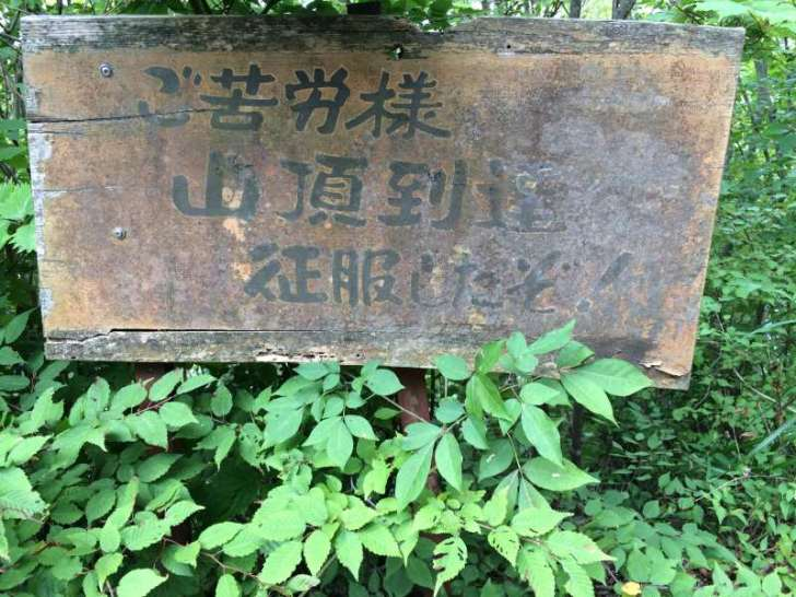 三ツ瀬明神山を登山してきたよ!登山ルートは絶景の乳岩コース【愛知】 (28)