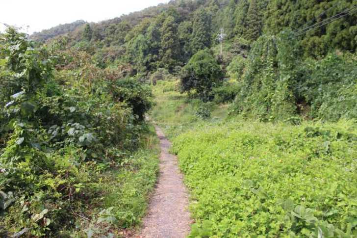 滋賀の絶対行くべきおすすめ観光スポットは「沖島」で決まり! (35)