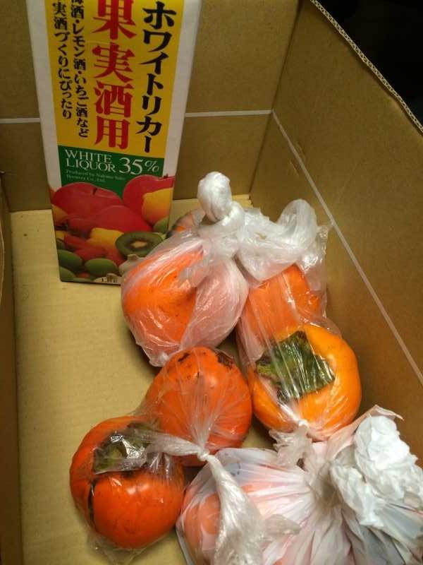 渋柿を醸造アルコールで渋抜き。渋味抜いた柿が甘すぎてやばい! (3)