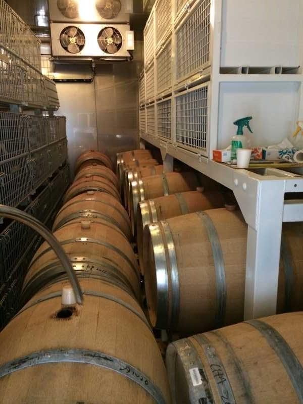 ワインの王様のぶどう品種「ピノ・ノワール」を使う山梨のワイナリーを見学してきたよ! (11)