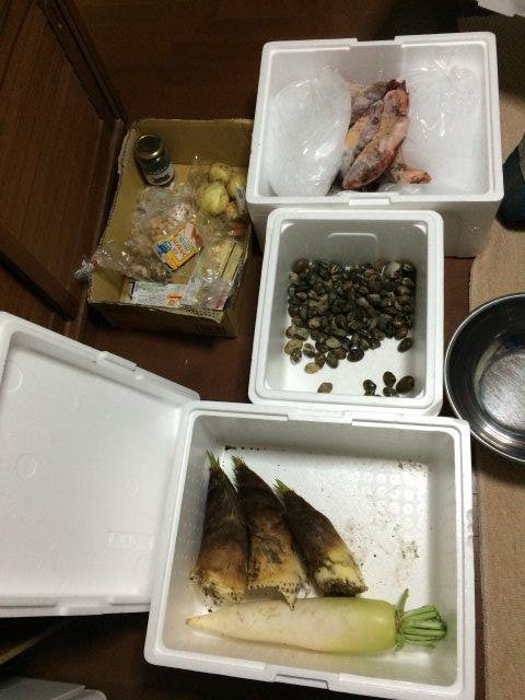 【田舎暮らしの春の旬】タケノコ掘りに、わらび、つくしを採って食べてみた! (5)