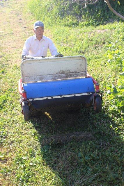 2016年は畑を耕さずに野菜を育ててみることにした。無農薬の不耕起栽培!