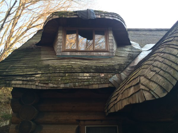 伊豆のスターヒルズのログハウスと作りかけのアースバックハウスがすごすぎた!【静岡】 (36)