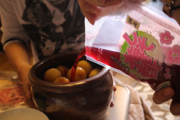 梅干しと梅酒の作り方!熟成梅は梅干しに、青梅は梅酒に、っていうけど、青梅も梅干しにしてみた (12)
