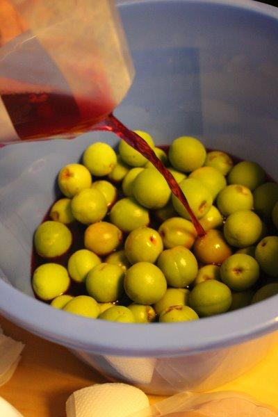 梅干しと梅酒の作り方!熟成梅は梅干しに、青梅は梅酒に、っていうけど、青梅も梅干しにしてみた (14)