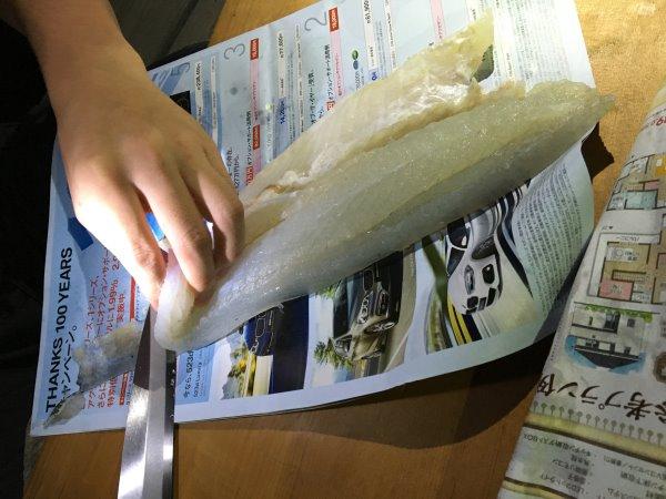 今年も福井で魚突き!キジハタとスズキとカサゴ他いろいろ獲ったど~!!! (4)