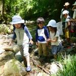 自然を楽しむ子供たち
