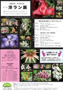 2017年第25回京都府立植物園洋ラン展