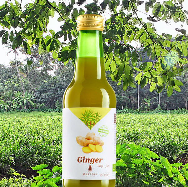 gembersap bio, Martera Ginger Juice 250ml