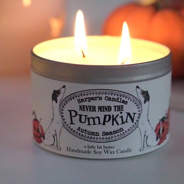 harper's candles pumpkin vegan geurkaars