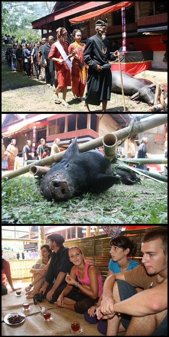 Toraja funeral