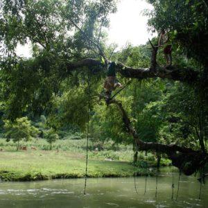 Jump au Laos depuis un arbre
