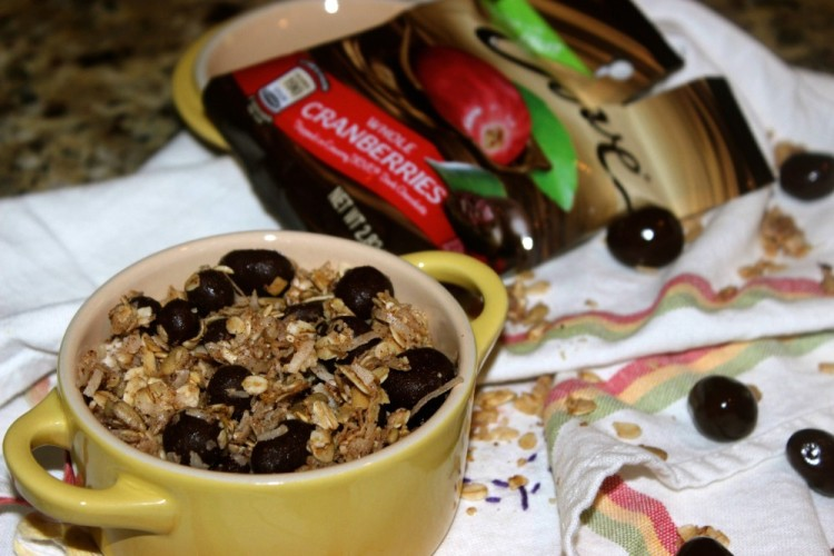 Homemade Granola with DOVE® Fruit  #lovedovefruit #collectivebias