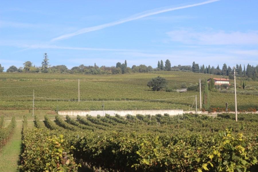 Veneto Region of Italy