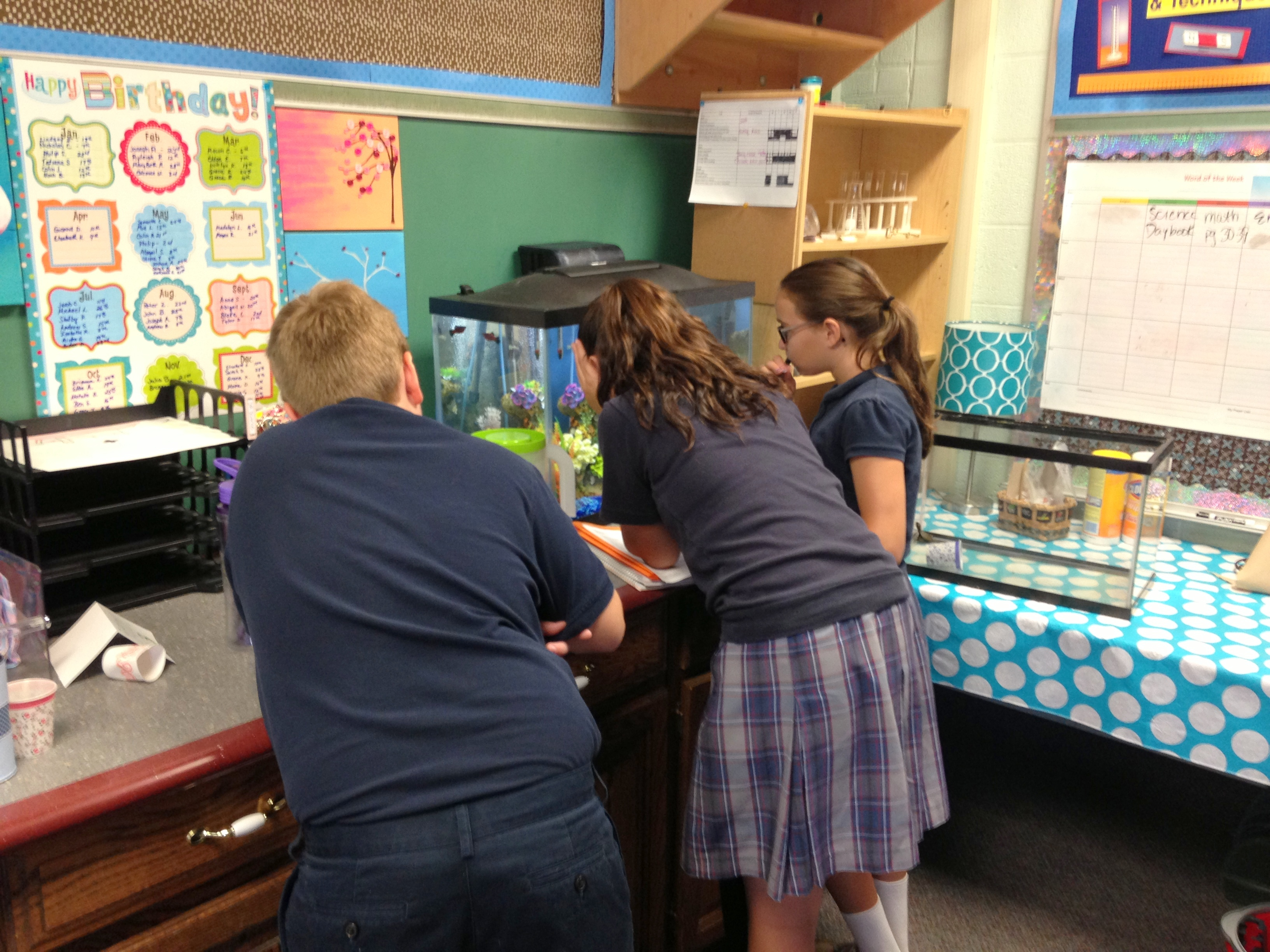 Science Activities The 5e Teacher