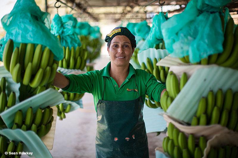 Fairtrade Canada_Peru_Hawkey_161010_0017_402-web