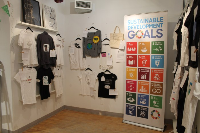 EXAMPLE: SDG T-Shirts!