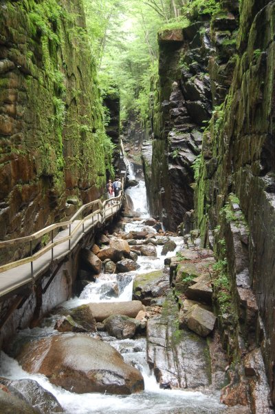 Franconia Notch State Park - The Flume - Franconia, NH ...