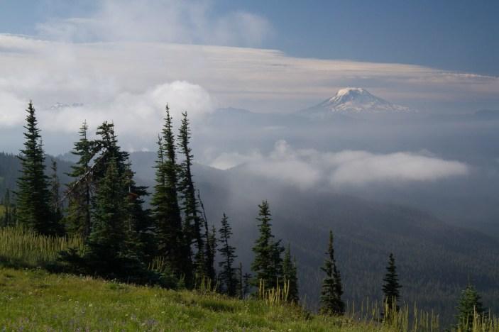 View of Mt. St. Helen's