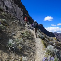 Highs & Lows of Trekking Peru's Cordillera Blanca: Days 4-6