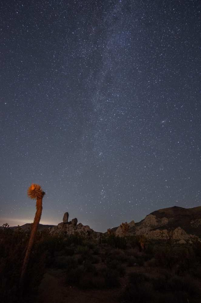Milky Way Andromeda starry sky stars Joshua tree national park