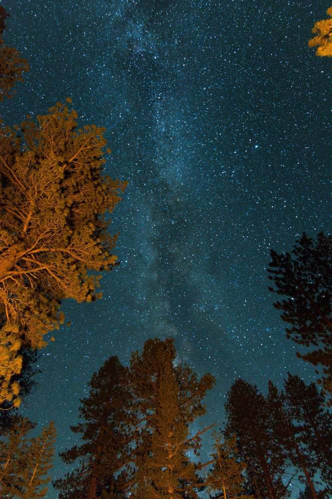 Milky Way shines over Inyo National Forest near June Lake and Obsidian Dome