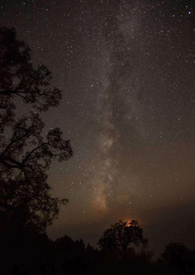 Milky Way stars starry night sky live oak