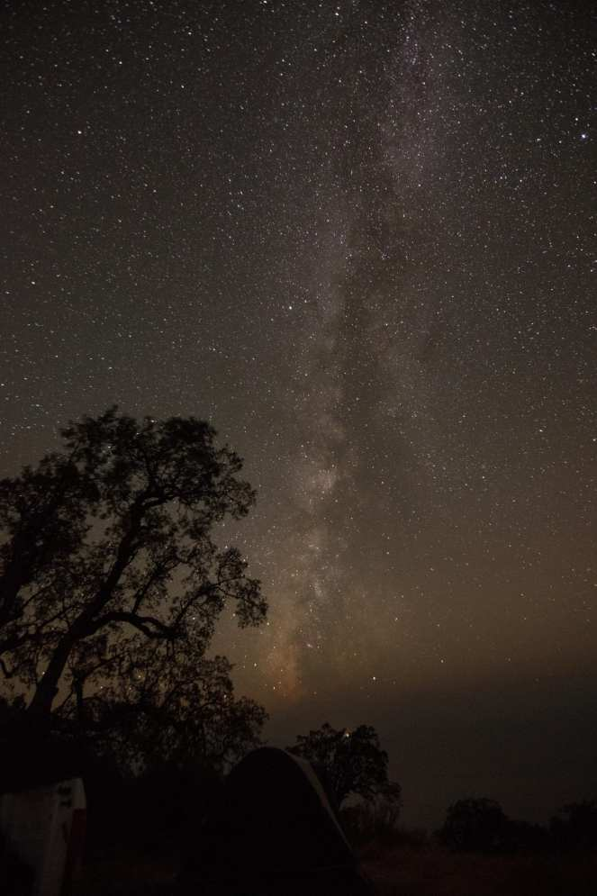 Milky Way Live Oak tree tent campsite Pacific Ocean big sur California