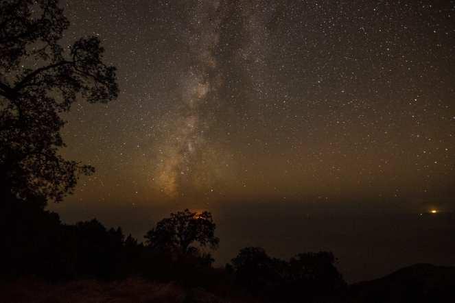 Milky Way tree ocean landscape night