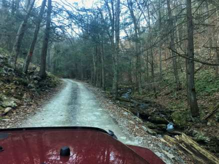 A forest service road runs uphill alongside a small creek through the Pennsylvania hunting lands forest