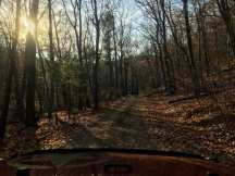 Leaves cover a dirt road running through Pennsylvania gamelands. The sun sets in the distance.