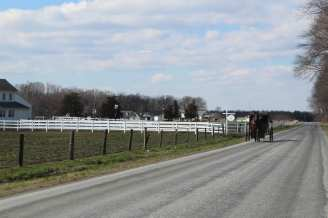 Amish buggy in Delaware farm country