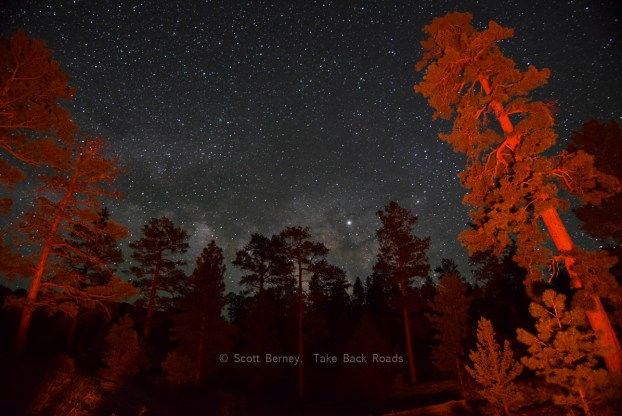 The Milky Way rises along the horizon, peeking through silhouettes of evergreen trees. Two trees in the foreground glow red from a campfire nearby. A starry sky expands overhead. What equipment do you need to take pictures of the night sky