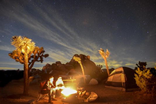 Two men sit next to a bright campfire in Joshua Tree National Park. The fire illuminates their faces, the tall joshua trees surrounding them, their tent, and the truck and rock formation behind it.