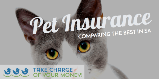 Pet Insurance : comparison of best South African pet medical aid companies