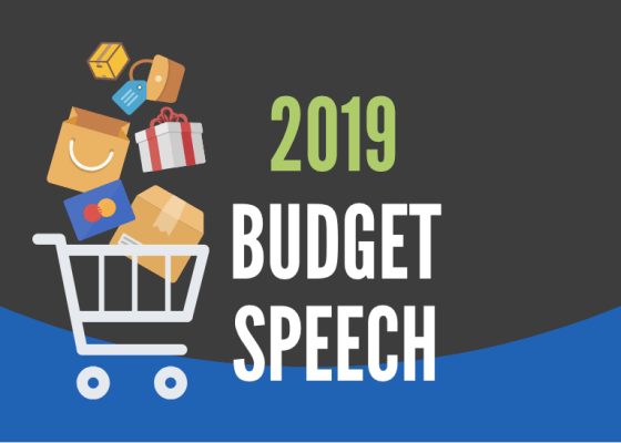 How the 2019 Budget Speech affects you